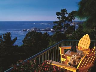 Breathtaking Hyatt Big Sur Sanctuary, Carmel Valley