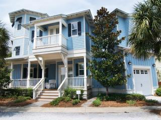 Stunning 4 Bedroom Home Close to Beach and Pool, Seacrest Beach