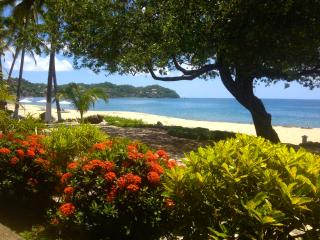 Best Beachfront House in Sayulita