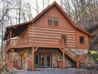 Secluded Cabin -  Pet Friendly!, Townsend