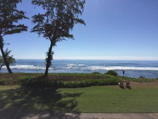 Kauai Oceanfront Studio Retreat $99 (New Listing!), Kapaa