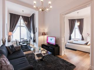 Grand Apartment-in the center of Berlin