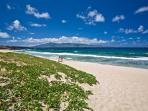 From Ironwoods to D.T.Fleming Beach, you`ll love the beautiful perfect beaches here!