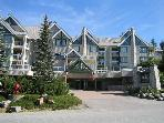 Top floor end unit, nice big hot tub in lodge,free parking/internet