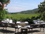 This lovely 6 bedroom villa, surrounded by the hills and vineyards of Tuscany, produces its own wine BRV SAS