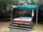 Spa with 25ft tall Black Bamboo in back