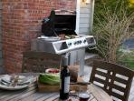 enjoy the gas BBQ in any season