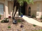 The young plants are now established making our landscaping one of the best on Thousand Oaks!