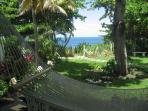 Views of the beach from the hammock