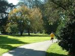 Golden Gate Park Panhandle walking and jogging trails just three blocks from YourHomeInSanFrancisco