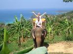 Elephane Riding in the Tropical Scenery