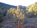 MBR Deck View of Carson Natl Forest hiking trail beyond