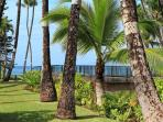 Comfortable House with 3 BR & 3 BA in Lahaina (Puamana 48-2 (3/3) Standard GV)