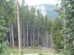 View from the front Porch of Peak 9
