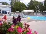 Beautiful Olympic Size Pool with separate children's pool. -- www.MyLakeCondo.com