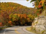 Visit us in the fall.  Magnificent scenery. Visitors arrive from all over the country.
