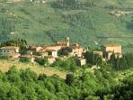 La Pozza di Volpaia- near center of medieval hamlet, lush scenery & intimate pool