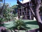 View towards our building across grassy courtyard
