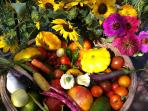 Fresh flowers and homegrown veggies from our gardens and greenhouse