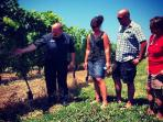 Konzelmann Winery, The Read House Guests enjoying a free tour and taste