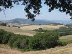 View on Podere Grignano on the small hill on the right with Volterra in the back
