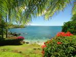 Grassy oceanfront lawn with view of Pacific
