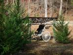 As you enter the driveway our new Horse Cart
