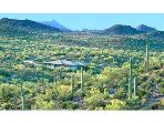 Tucson Retreat, a Sonoran Desert Sanctuary