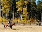 Explore the Sierras on horseback at Tahoe Donner's Equestrian Center