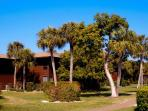 The resort is beautifully landscaped and well mantained.