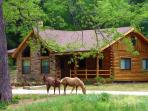 Brazos Bluffs Ranch to Horseback Ride, Canoe+++!