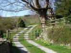 the approach to the cottage
