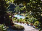garden with pool and leisure area
