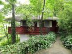 Pet-Friendly cabin 3 min. to downtown Asheville