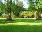 The Lawn in the Garden