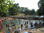 Walk your dog to the popular Barkin' Springs to cool off