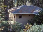 Pine Arbor Retreat and Surrounding tall trees
