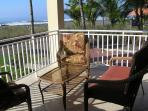 Playa Barqueta Beachfront Condo - Private end unit