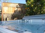 West Coast Villa Jetted Hot Tub With Over 100 Jets