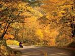 Drive spectacular, winding roads around Cashiers
