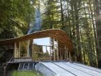 Parabolic All-Glass House in the Redwoods