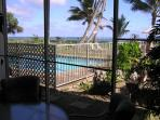 View from patio (lanai)