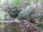 Great picnic spot in Cades Cove, 45 mins. from the cabin.