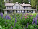 Lupine Lodge on Lake Superior