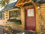 Enchanting Mountain Cabin Wooded Property w/ WiFi