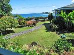 The tropical gardens of Hana Oceanfront Cottages