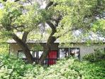 20% off thru Feb- The Kaleido House by Zilker, DT!