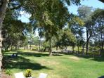 Huge Private Backyard. House sits on over 1/2 acre.