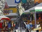 Silver Star's alpine village is Disneyland in the snow. Magical and unique. CLICK on Photo Gallery Link to see the full...