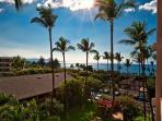 Ocean View Upgraded 1-Bedroom Condo Across from Kamaole Beach 2